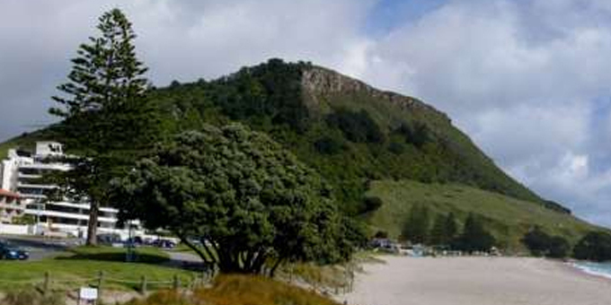 Land challenge for Tauranga council