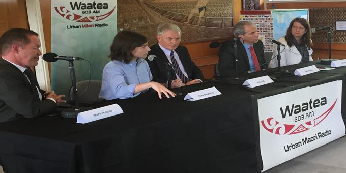 Goff challenge to call Maori seat referendum