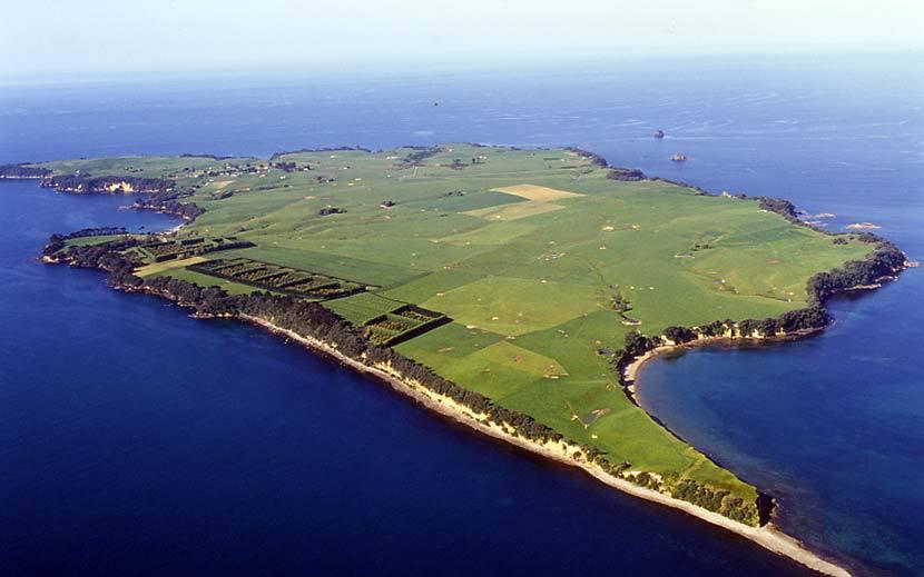 Motiti hapu win protection order for reefs