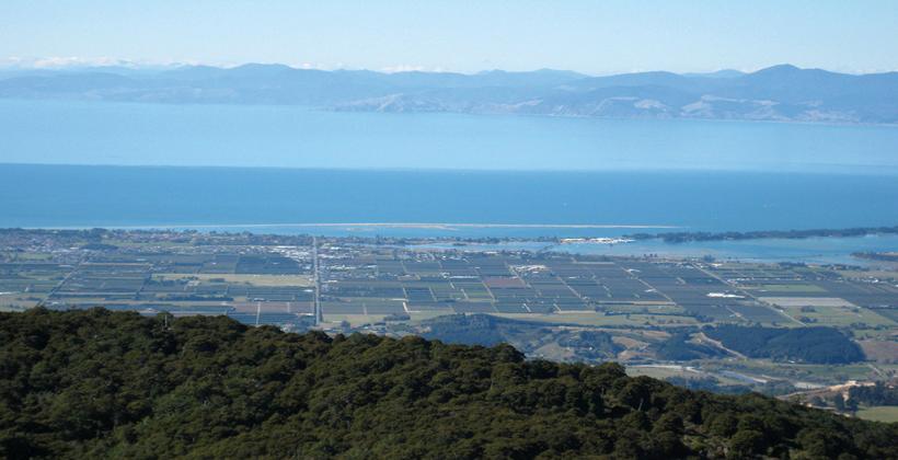 Wakatu continues land fight