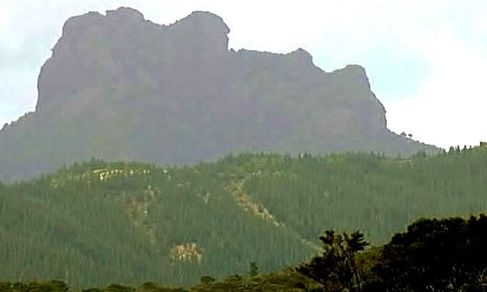 Rāhui on killer climb