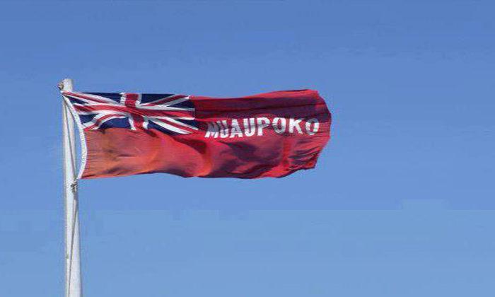 Muaūpoko ancestor speaks through development