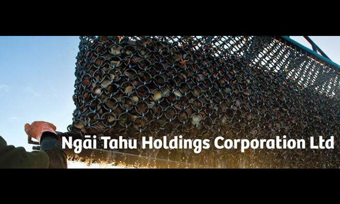 Pohio steps in to run Ngai Tahu business