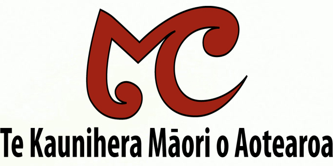 Mark-Shadbolt ousted from Te Waipounamu council