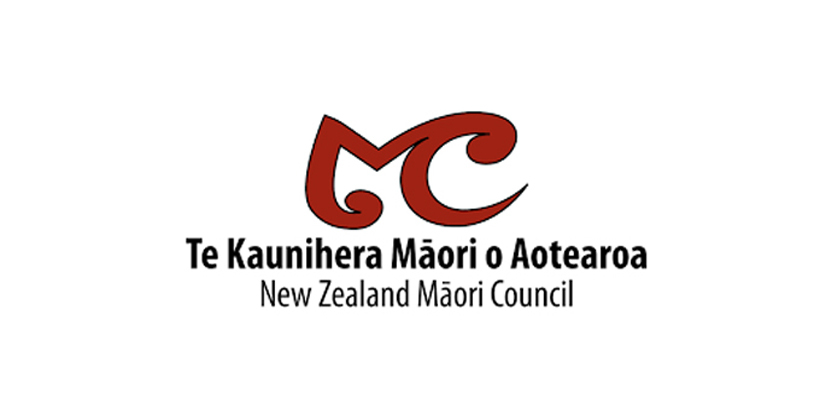 Court rules out Auckland District Maori Council election