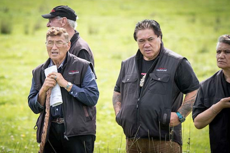 Omapere template could suit other Maori blocks