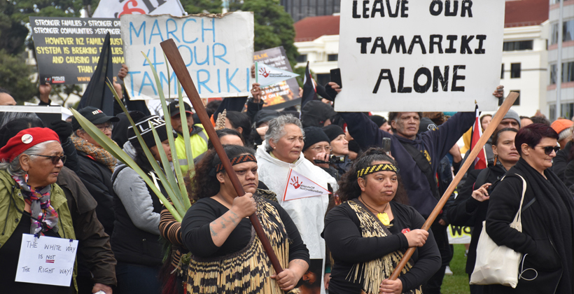 Push Oranga Tamariki Out of the Equation Māori Know What Works for Their Own
