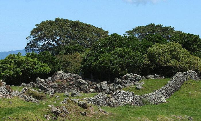 Otuataua heritage status upgraded