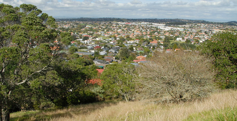 Orakei compromise not suitable for Owairaka conditions