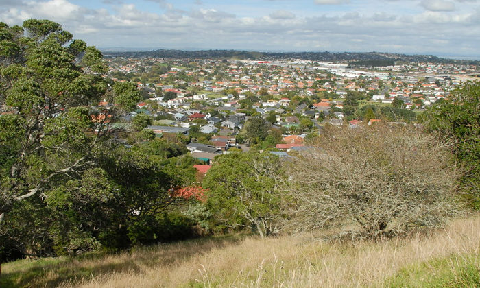 Hobson's Pledge weighs in to tree battle