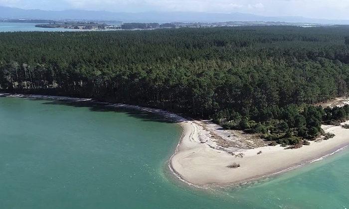 Council agrees to return Matakana Island whenua