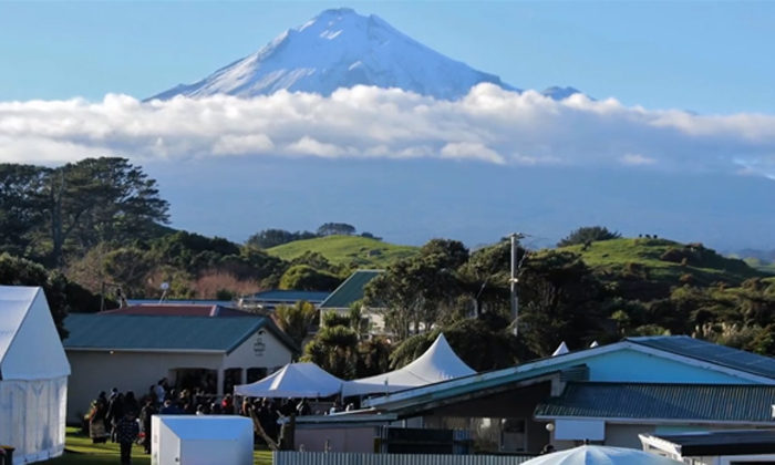 Parihaka set to tell story for reconciliation
