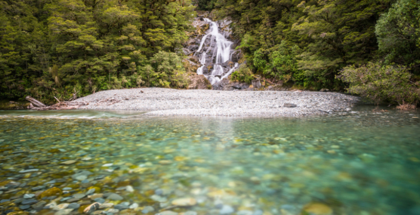Maori landowners get PGF help to fence streams