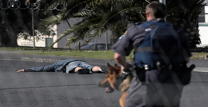 Armed police a threat to Maori in moment of madness