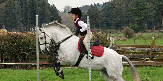 Pony clubs to make way for public park