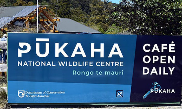 Mighty totara to have new role in wildlife centre