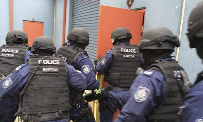 Aussie policy not right for gangs