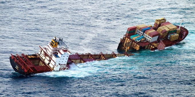 Rena reef park unacceptable