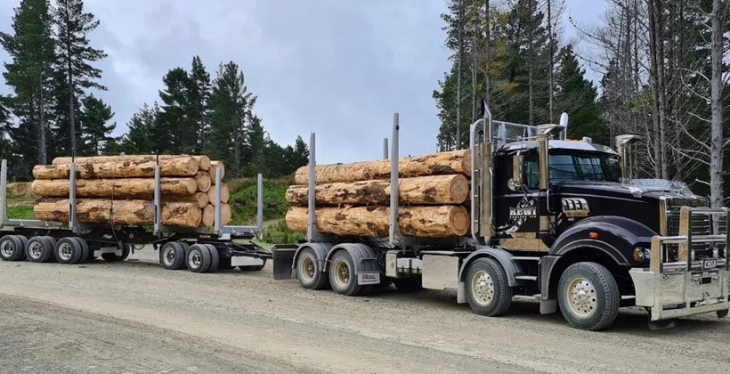 Care for workers wins award for coast trucking company