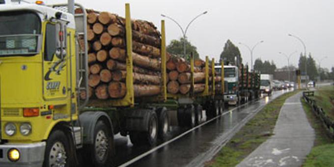 Te Arawa to fight Rotorua arterial road
