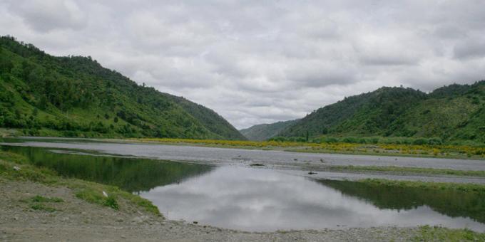 Tirohia ngā taunaki kōrero