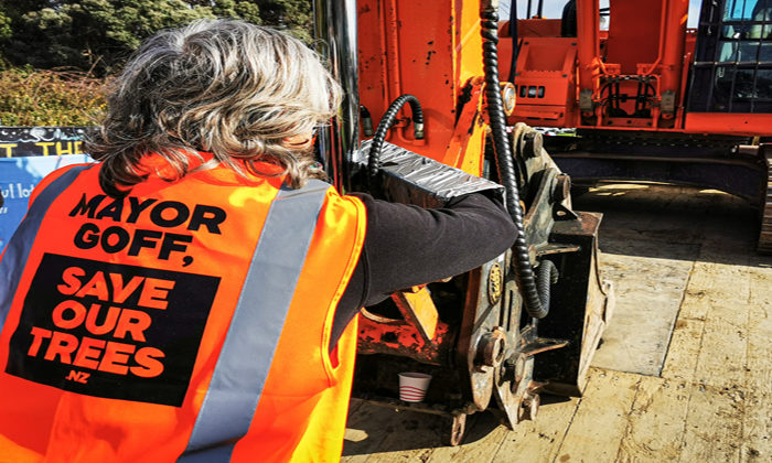 Early action stops tree felling