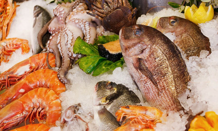 Covid-19 effects on seafood industry