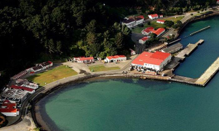 Shelly Bay vote review shows no deliberate suppression