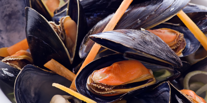 Shellfish warning lifted in all Auckland areas
