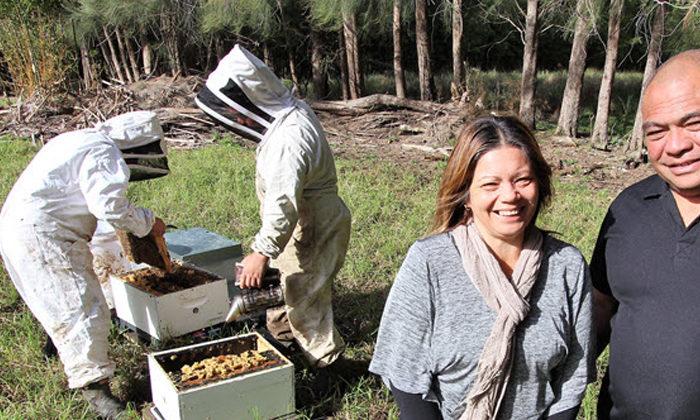 Bitter test for honey producers