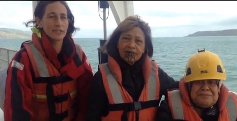 Taranaki wāhine highlight exploration concerns in their moana