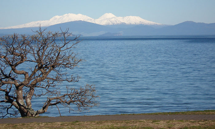Councils support extension of Taupo clean up