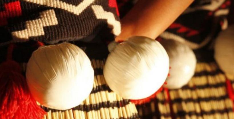 New world opens for haka studies