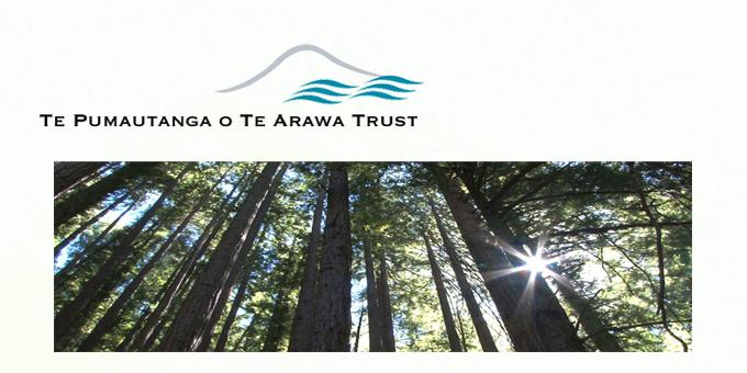 New chair for Te Pumautanga o Te Arawa