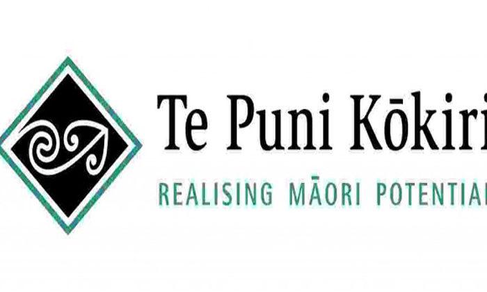 Kōkiri trust vision for Taumarunui eyesore