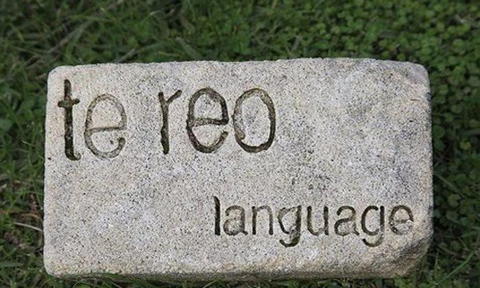 Maori principals want te reo taught now