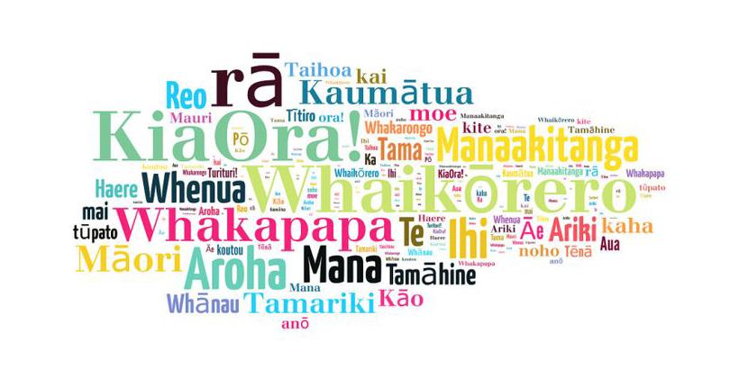 Opinion: He Whakaaro / Opinion