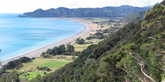 Ngā take whenua Māori kei te tirohia