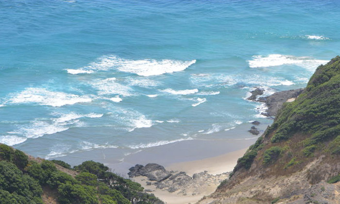 Lobby group forces Whakatohea rights appeal