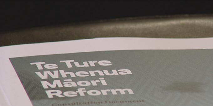 Iwi support for Maori land reform overstated