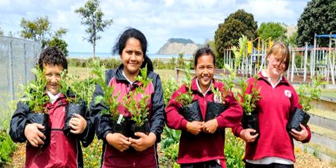 Uawa planting to turn back clock