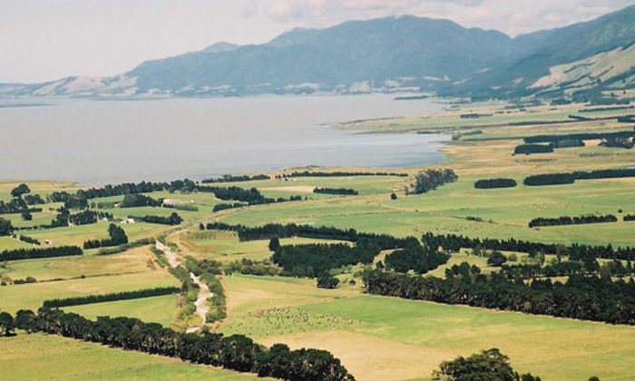 Wairarapa Moana gains Ramsar status
