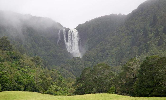 Matamata iwi takes step towards settlement