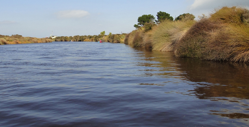 Lagoon clean up strategy upsets farmers