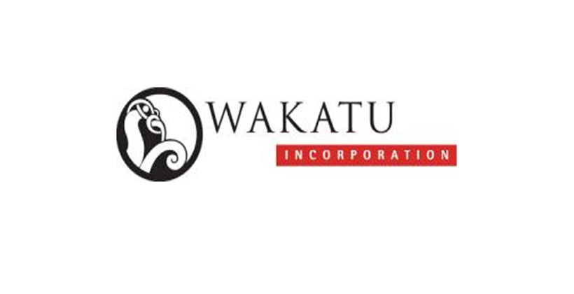 Wakatū looks for gold in the weeds
