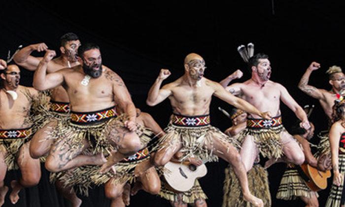 Kapa haka lions to roar in Tamaki