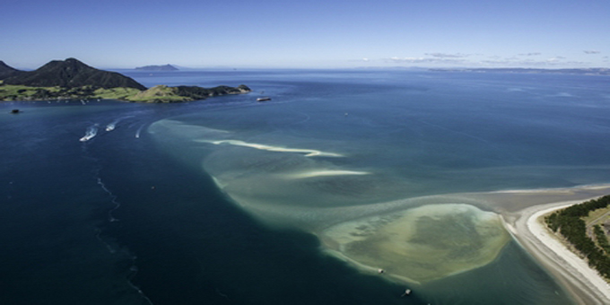 Hapu challenges Whangarei harbour dig