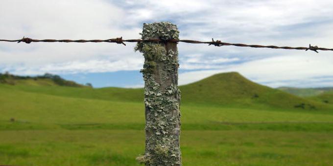 Ture Whenua Maori case not made