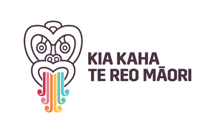 Success of Māori Language Moment draws scammers