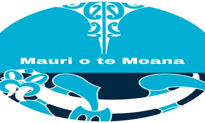 Online hui pushes case for rahui